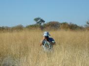 Thib dans le bush