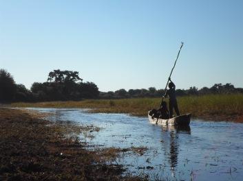 Okavango !