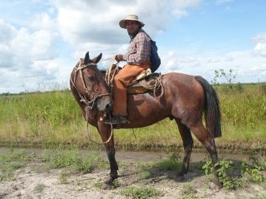 Un gaucho argentin