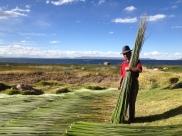 Pérou, lac Titicaca