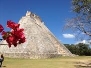 Mexique, Yucatan